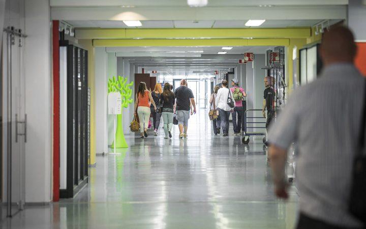 Opiskelijat kävelevät Kotkan kampuksen käytävällä selin kameraan.