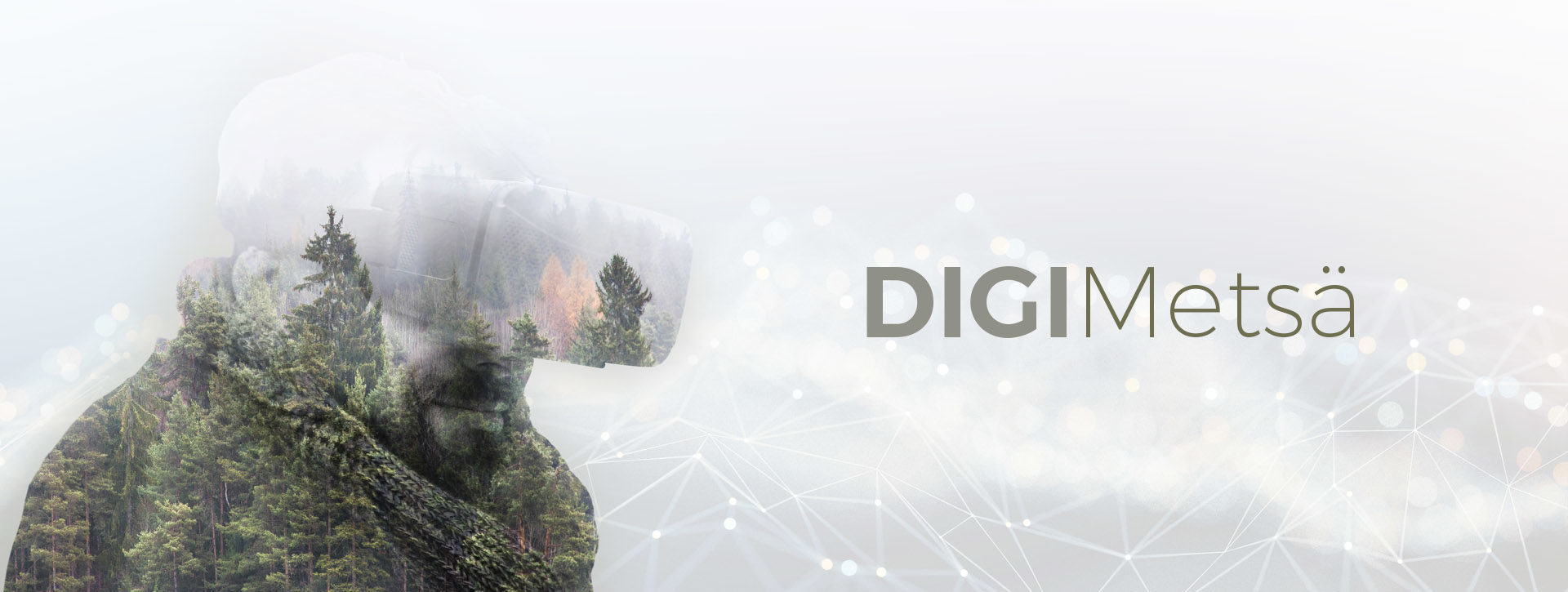 Digimetsä