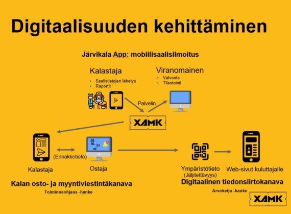 Xamin kalahankkeiden digitaalisuuden kehittämisen kokonaisuus